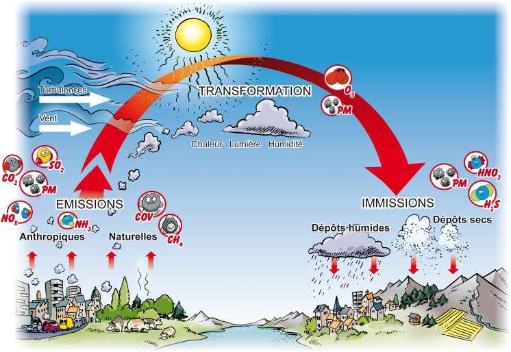 Le cycle de la pollution Page_cycle_de_la_pollution_cycle_pollution